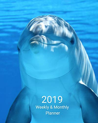 2019 Weekly and Monthly Planner: Blue Dolphin Daily Organizer -To Do -Calendar in Review/Monthly Calendar with U.S. Holidays-Notes Volume 48 - Sky Blue Dolphins