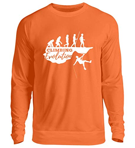 Shirtee Klettern Evolution - Geschenk für Bergsteiger und Bergsteigerinnen - Bouldern Kletter Berg - Unisex Pullover