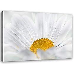 Feeby Cuadro de Pared XXL Flor Impresión Lienzo Naturaleza Blanco 120x80 cm