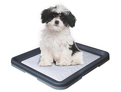 Artikelbild: Nobby 67150 Doggy Trainer S - 48 x 41 x 3.5 cm