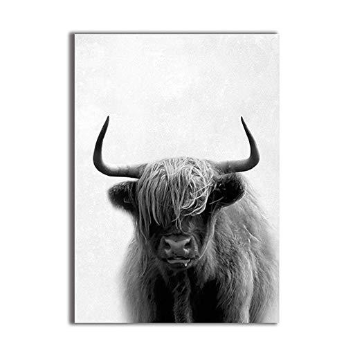 Animal vaca Vaca Lienzo Lámina póster Fotografía