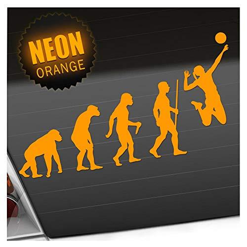 Kiwistar Volleyball Evolution Aufkleber Sticker 25 Farben Neon Matt -