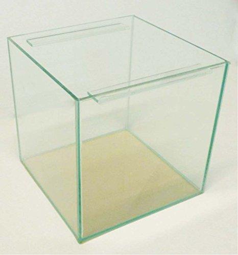 64 Liter Glasaquarium Würfel 40x40x40 cm Glasbecken Nano Aquarium mit Streben transparent verklebt