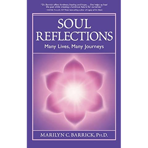 Soul Reflections: May Lives, Many Journeys (Sacred Psychology Book 5) (English Edition)