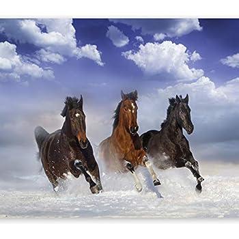 Fototapete Tapete Poster Pferde Tiere Mädchen 160x115cm KLEISTERFTM 0859 2