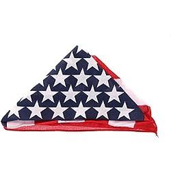 Adults Bandana Cowboy Neckerchief Patterned Fancy Dress Accessory -USA Flag