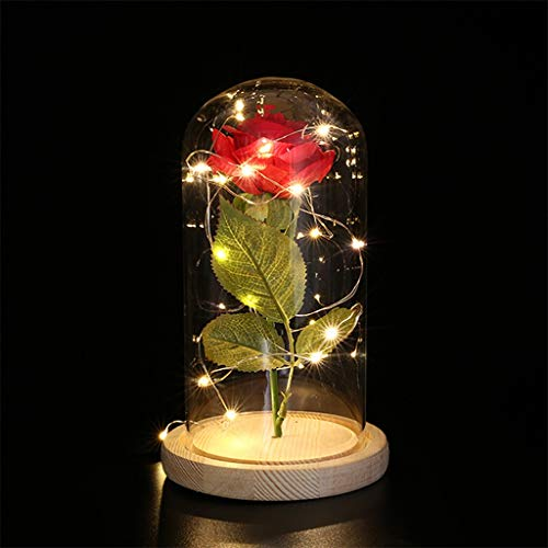 Rose, Edle Kunst-Rose mit LED-Beleuchtung in Echtglas-Kuppel Romantisch Geschenke für Muttertag Geburtstag Valentinstag Jahrestag Hochzeit Party Club Dekoration ()