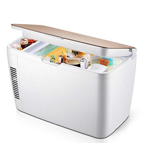 Fridges Elektro-Durchlauferhitzer Mini Kühlschrank mit Doppelspannung 12 V DC / 220-240 V AC für Auto und Zuhause, tragbare 12 Liter für Reisen, Camping [Energieklasse A+++] - 220 Elektro-durchlauferhitzer