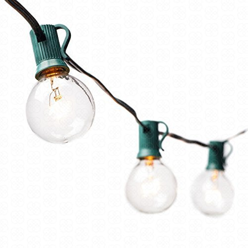 hts with 25 Clear Bulbs by Deneve? - UL Listed Commercial Quality String Lights Perfect for Indoor / Outdoor Use - 3-YEAR 100% Satisfaction Guarantee on Light String! (Green) by Deneve (Globe Lights String)