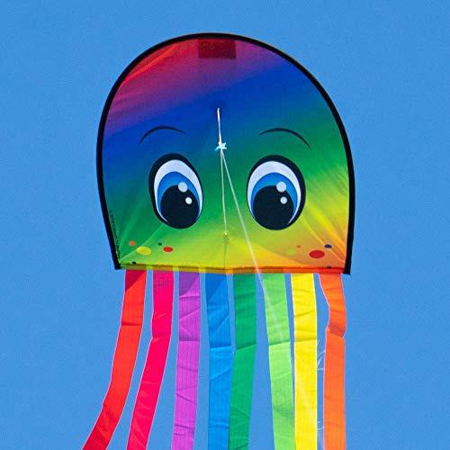 CIM Kinderdrachen - DRAKI XL - Drachen Abmessungen: 31 x 180cm - inkl. 40m Drachenschnur auf Handgriff - für Kinder ab 3 Jahren (Rainbow)
