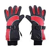 Towinle Beheizte Handschuhe, Beheizbare Fahrrad Motorrad Handschuhe mit wiederaufladbare Lithium-Ionen-Batterie Unisex Warme Winterhandschuhe