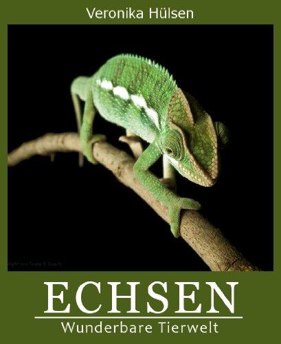 Echsen (Wunderbare Tierwelt 3)