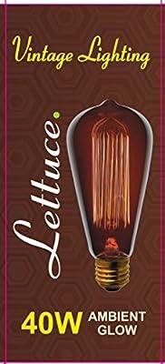 Lettuce 1x Vintage light bulb Retro old fashioned Edison Style E27 Screw ST64 19 anchors 40W 220V - Squirrel Cage tungsten filament glass antique Lamp