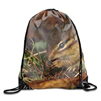 HouyunCC Animal Chipmunk Drawstring Backpack Bags polyester fabric Folding Shoulder Cinch Bag