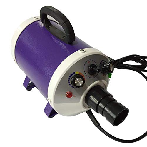 HYCy Haustier Trockner 2000W Schlag Stumm Negatives Ion Zum Haar Hoch Leistung Wasser Geblauml;se (Farbe : Purple) (10 Schlag-trockner)