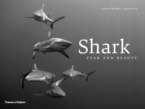 Shark: Fear and Beauty