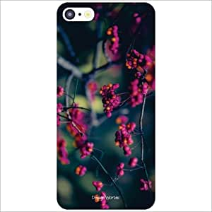 Design Worlds Back Case Cover For Apple iPhone 5C