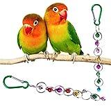 Huafi Swing Chain Giocattolo con Campana, Uccello Biss, Giocattolo per Uccelli, pappagalli, pappagalli, pappagalli, agaporni, Farfalle, api Grigi, aras
