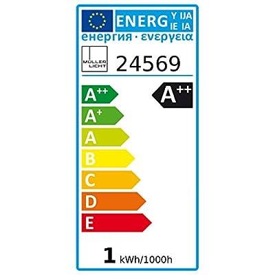 MÜLLER-LICHT 400261 A+, LED Kühlschranklampe, Plastik, 2.5 watts, E14, weiß, 2.5 x 2.5 x 6 cm