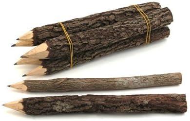 Twig-uums Whimsical 5 inch Twig Pencils PK PK PK OF 12 by macnan | Bella Ed Affascinante Della  | Primo gruppo di clienti  | Una Grande Varietà Di Merci  1dcf82