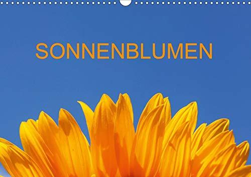 Sonnenblumen (Wandkalender 2020 DIN A3 quer): Fotografien von Sonnenblumen im Sommer (Monatskalender, 14 Seiten ) (CALVENDO Natur)