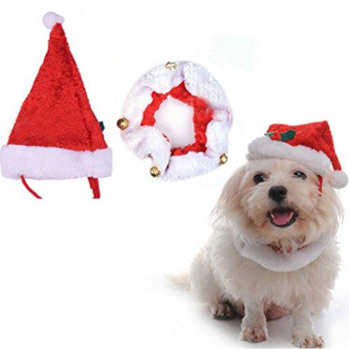 Transer® New Fashion Merry Christmas Haustiere Hund Katze Weihnachts Santa Hat + Halsband Charme mit Jingle Bells Weihnachten (Für Kostüme Hunde Weihnachten Cute)