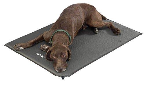 hundeinfo24.de Farmland Luftmatratze für Hunde