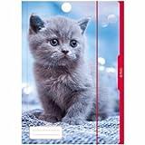 5 x Herlitz Sammelmappe A3 Katze