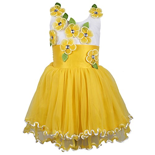 Wish Karo baby girls Party wear frock dress DN195y (3-6 Months) fr195y _3-6 Mnth