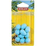 Zolux Pack de 10 Œufs Factices pour Canari