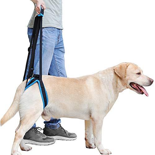Rantow Imbracatura Regolabile per Cani per lesioni Artrite Restrizioni alle articolazioni delle Zampe Posteriori deboli