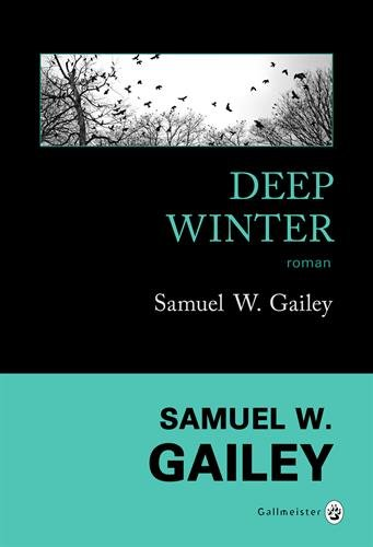 Deep winter : roman