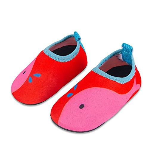 Laiwodun Kleinkind schuhe schwimmen Wasser Schuhe Mädchen Barefoot Aqua Schuhe für Beach Pool Surfen Yoga Unisex (2-34-35)