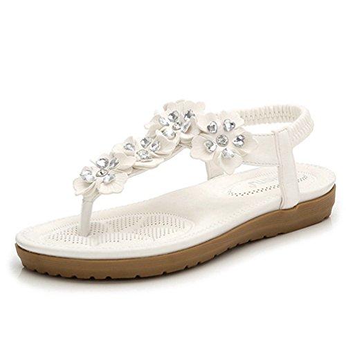 JRenok Women es Fashion Thong Bohemia Sandalen Clip Toe Slip auf Flip Flops Flache Gladiator Sandale Strandschuhe (Kette Thong Sandale Kette)