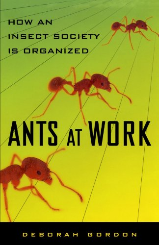 ants-at-work-how-an-insect-society-is-organized
