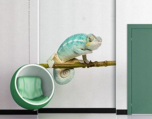 wandtattoo-no151-chamaleon-blau-wandsticker-wandtattoo-reptilien-exotisch