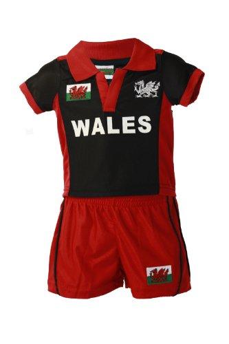 Manav Juego Rugby Felpudo Fibra Bandera Gales diseño