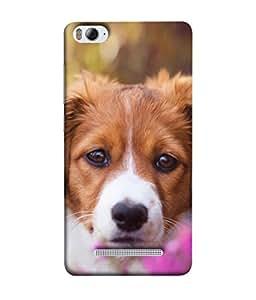 Snapdilla Designer Back Case Cover for Xiaomi Mi 4i :: Xiaomi Redmi Mi 4i (Picture Smile Pet Mammal Animal Pedigree Wallpaper)