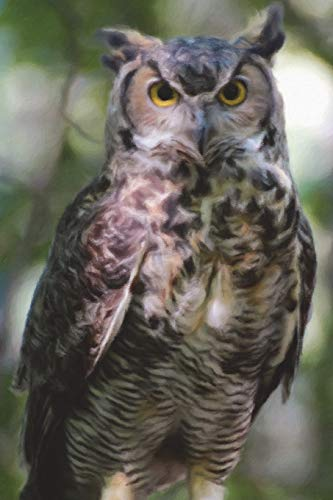 Owl Standing Guard - Lined Notebook with Margins: 101 Pages, Medium Ruled, 6 x 9 Journal, Soft Cover - Owl-guard
