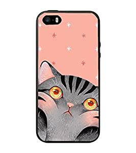PrintVisa Greyish Cat High Gloss Designer Back Case Cover for Apple iPhone 5