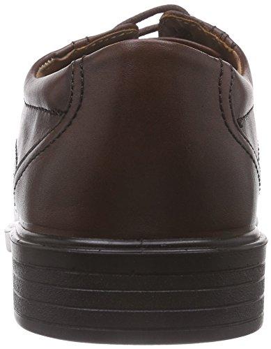 Padders Aston, Scarpe Stringate Basse Derby Uomo Marrone (Brown (Antique Brown))