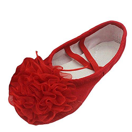lisianthus002Little Kid Ballett Blume Schuhe Split Sole Rot