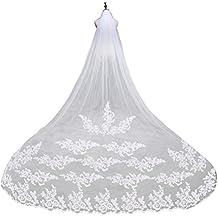 LEORX Premium bordado encaje largo borde boda nupcial velo Mantilla con peine de 260CM