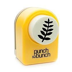Punch Bunch Punch Bunch Medium Punch-Rock Fern, 1-inch
