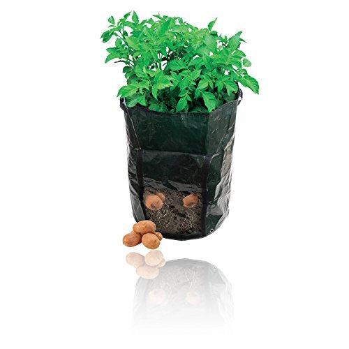 patate-da-semina-borsa-sacca-impermeabile-360-x-510-mm