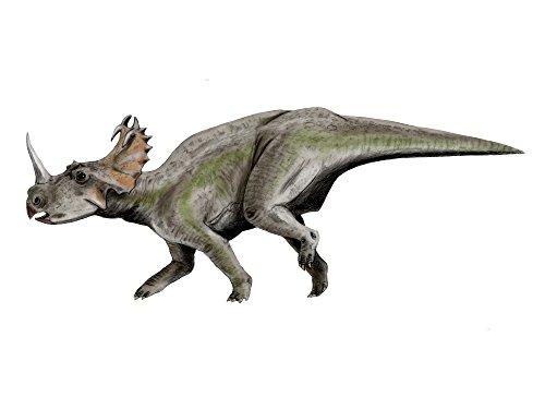 Nobumichi Tamura/Stocktrek Images – Centrosaurus dinosaur. Photo Print (83,31 x 62,48 cm)
