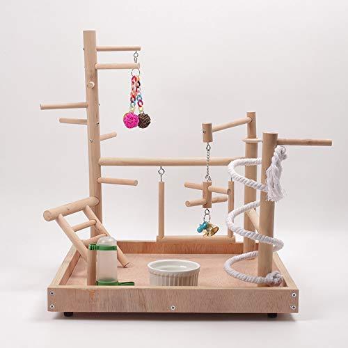 Il recinto di legno del bambino dell\'uccello, scala di forma fisica del pesce persico del parco giochi dell\'uccello del pappagallo con il gioco di esercizio del giocattolo della tazza dell\'allevatore