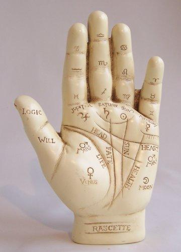 grande-ornement-de-la-main-chiromancie-livret-lecture-palm-enseignement
