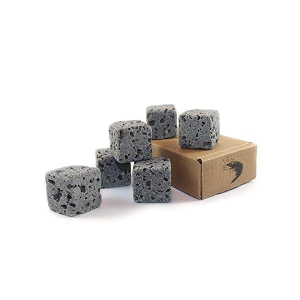 6 Eco Bricks – Water Purifying Aquarium Decor Stones – 100% Natural Lava Rock
