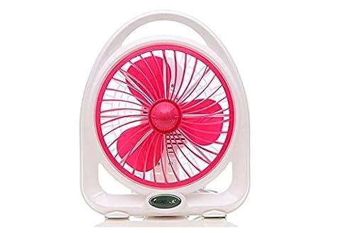DZW Fan mini ventilateur de bureau 2 vitesses 24cm lit silencieux portable maisonUltra-silencieux sans
